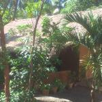 Feel some experience of a old sri lankan village house