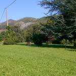 Photo of Le Radici