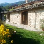 Photo of Agriturismo Casa Mameli
