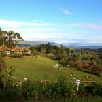 Views from the Ambua Lodge