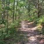 Great hiking trails.
