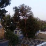 Photo of Hotel Amaryllis
