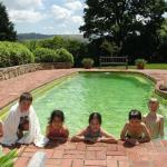 Kids in the Solar Heated Pool
