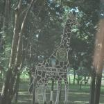 Twiga-(Giraffe) Lodge entrance