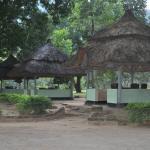 Gardens at Twiga Lodge