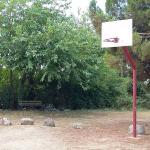 Canastas de baloncesto para disfrutar!