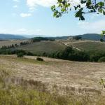 Photo of Podere Bellaria