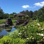 Gosford Japanese Gardens Point Cafe