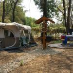 Arlington KOA camp site T6