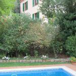 La maison depuis la piscine