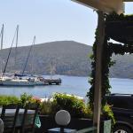 terrasse face au port