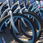 Top Quality Bike rentals