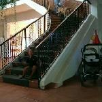 scala senza ascensore  e cani