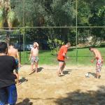 Activité volley