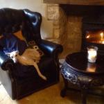 Comfy dog friendly pub;)
