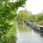 El canal y sus botes