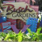 Bilde fra Busch Gardens
