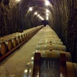 Wine cave at Antica.