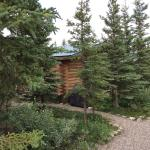 Foto de Park's Edge Log Cabins