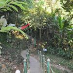 Тропинка вокруг водопада