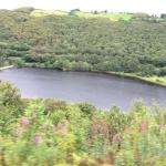 The reservoir just below the Hydro Electric station