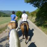 A short ride along the road before a canter through a field