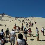 Montée de la dune