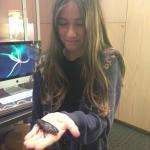 Mi hija sostiene una enorme cucaracha en su mano