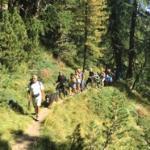 escursione in gruppo Shandranj  a Pampeago -Monte Agnello   Monte Cormon - Tesero