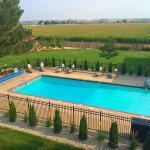 Beautiful courtyard and pool