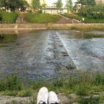 ริมแม่น้ำ