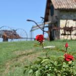 Foto de Azienda Agraria Montelujano