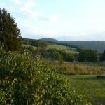 great terrace views