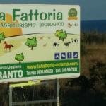 Photo of Bio-Agriturismo La Fattoria