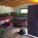 Moorhen Guest House - Coots Cabin