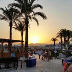 Just a few pics from our recent stay at Sharm Plaza. Beautiful place with friendly staff and gre