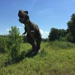 Field Station: Dinosaurs Photo