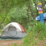Foto di Cape Henlopen State Park Campground