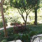 Foto di Hotel Villa Sanfelice