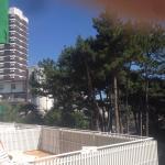 Foto di Hotel Soraya