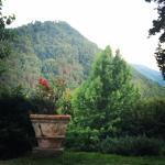 Landscape - Agriturismo La Torre Photo