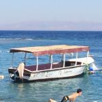 Yalla Bar Foto