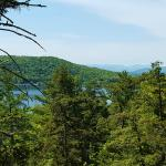 View from one of the hiking trails in the state park