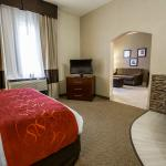 Photo de Comfort Suites Sugar Land