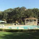 Pool and Gazebo