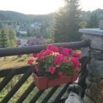 Photo of Hotel Klostermannova chata