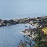 Foto de Gowlland Harbour Resort