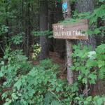 Photo de Hillwinds Lodge
