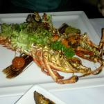Grilled Canadian Lobster