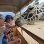Out of Africa Wildlife Park  Camp Verde